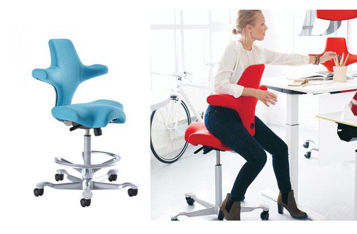 HAG Capisco Chair List $1219.70