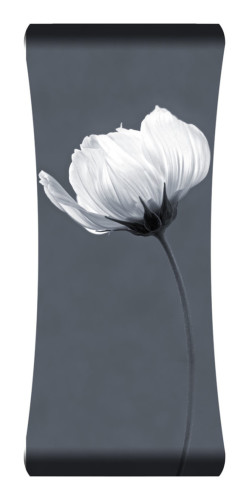 Single Stem Curved Wall Art List $199.99